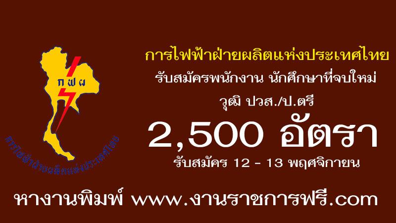 การไฟฟ้าฝ่ายผลิตแห่งประเทศไทย 2,500 อัตรา